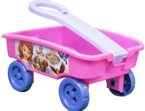 Sofia the First Disney Becoming A Princess Wagon