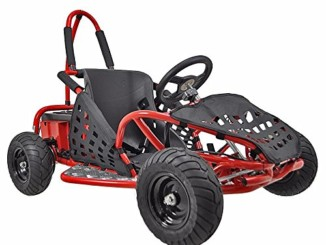 XtremepowerUS Gas Off Road Go Kart 2.5HP 80cc 4 Stroke, EPA ...