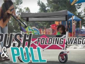 Push Pull Folding Wagon