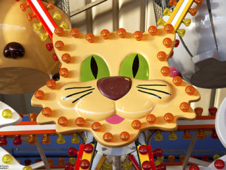 """""""Fairground Cat""""  Cat face sign in the centre of a..."""
