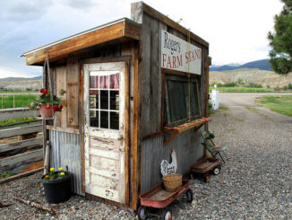 Seasonal roadside produce stand